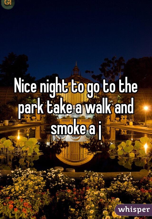Nice night to go to the park take a walk and smoke a j