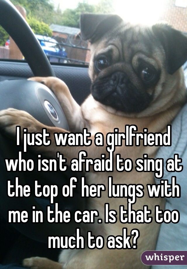 I just want a girlfriend who isn't afraid to sing at the top of her lungs with me in the car. Is that too much to ask?