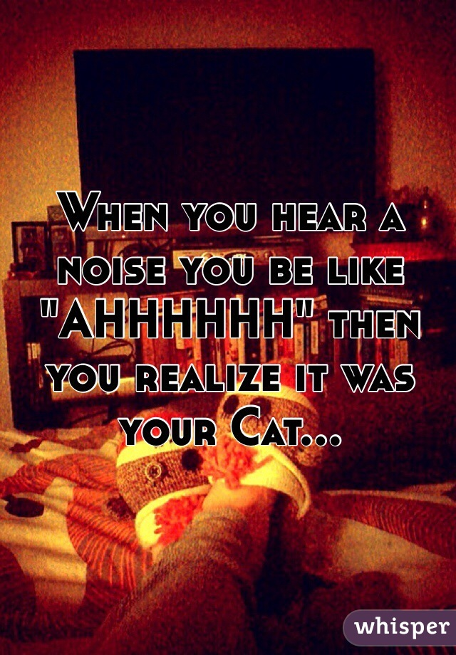 "When you hear a noise you be like ""AHHHHHH"" then you realize it was your Cat..."