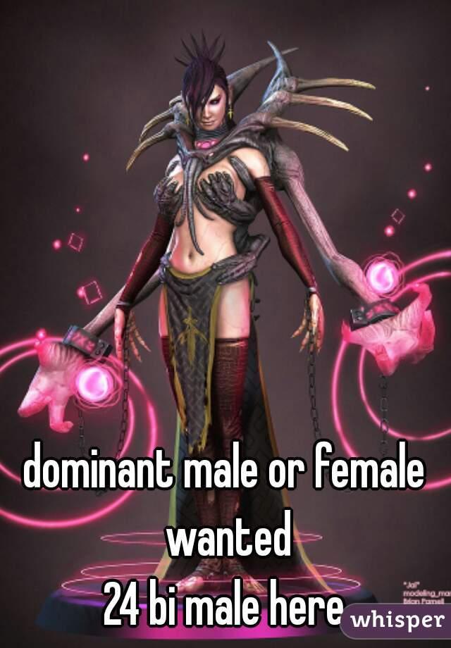 dominant male or female wanted 24 bi male here