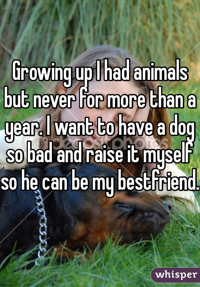 Growing up I had animals but never for more than a year. I want to have a dog so bad and raise it myself so he can be my bestfriend.
