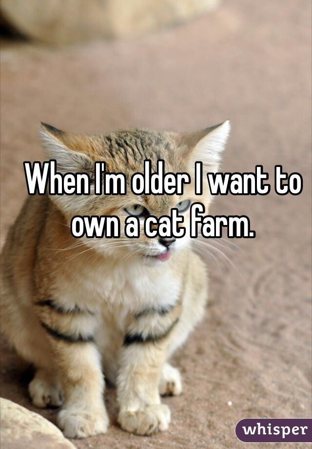 When I'm older I want to own a cat farm.