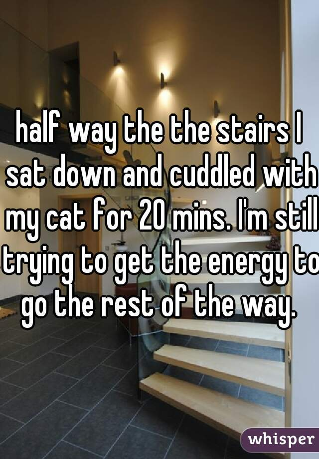 half way the the stairs I sat down and cuddled with my cat for 20 mins. I'm still trying to get the energy to go the rest of the way.