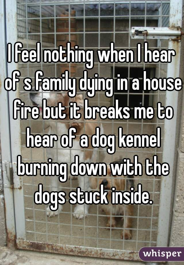 I feel nothing when I hear of s family dying in a house fire but it breaks me to hear of a dog kennel burning down with the dogs stuck inside.