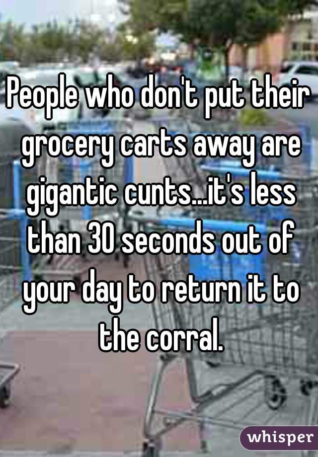 People who don't put their grocery carts away are gigantic cunts...it's less than 30 seconds out of your day to return it to the corral.