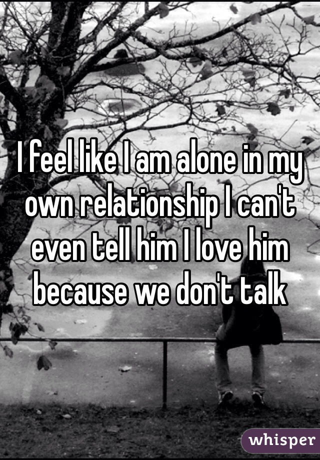 I feel like I am alone in my own relationship I can't even tell him I love him because we don't talk