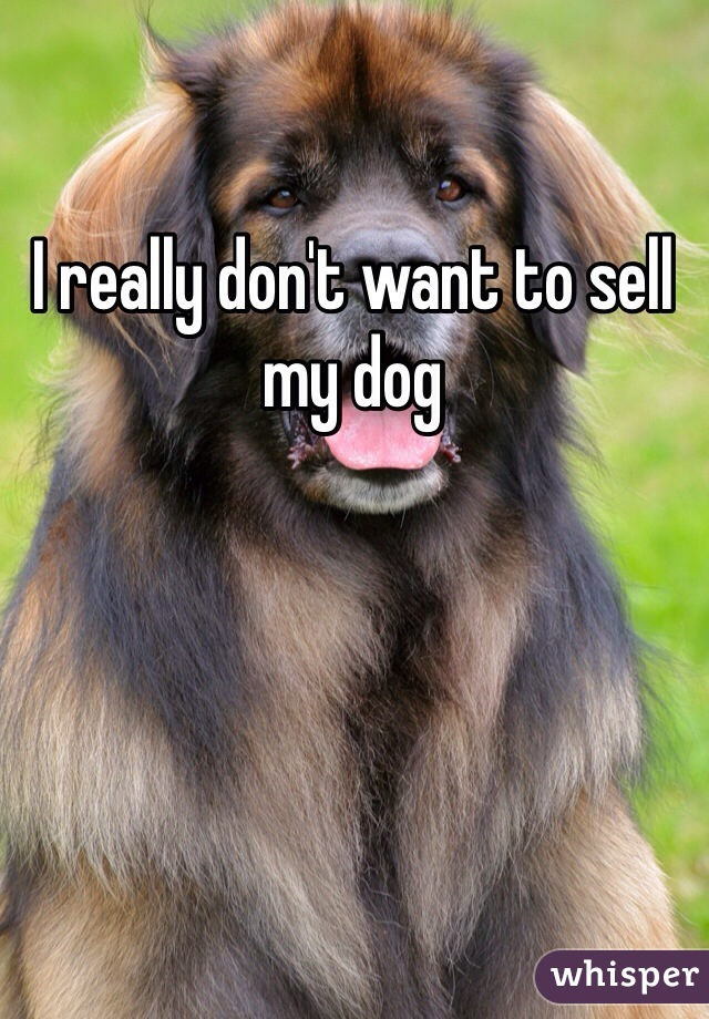 I really don't want to sell my dog
