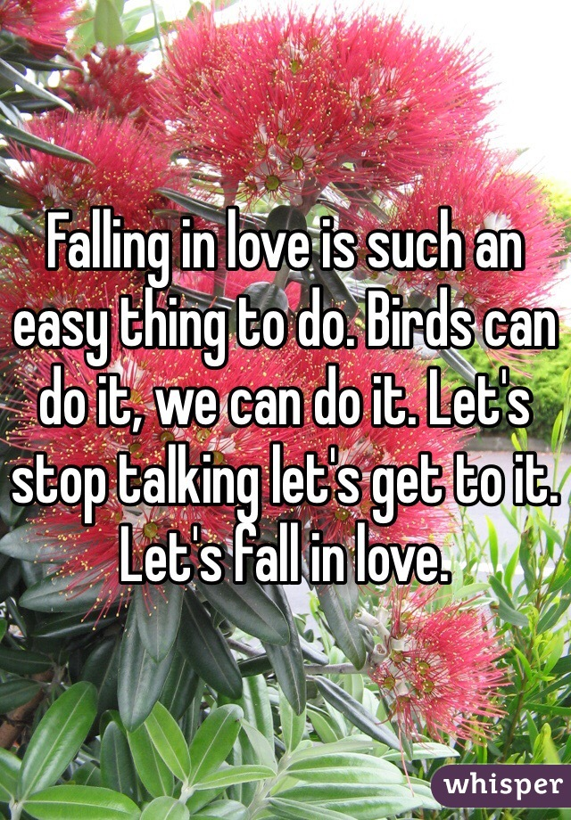 Falling in love is such an easy thing to do. Birds can do it, we can do it. Let's stop talking let's get to it. Let's fall in love.