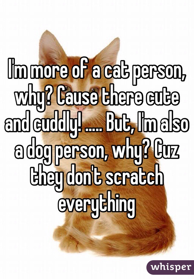 I'm more of a cat person, why? Cause there cute and cuddly! ..... But, I'm also a dog person, why? Cuz they don't scratch everything