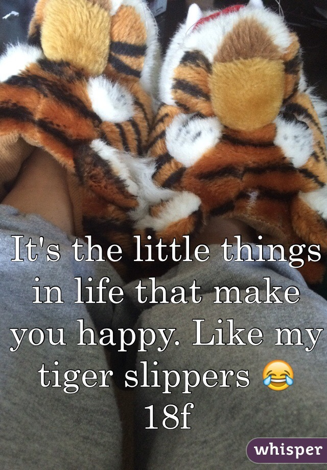 It's the little things in life that make you happy. Like my tiger slippers 😂 18f