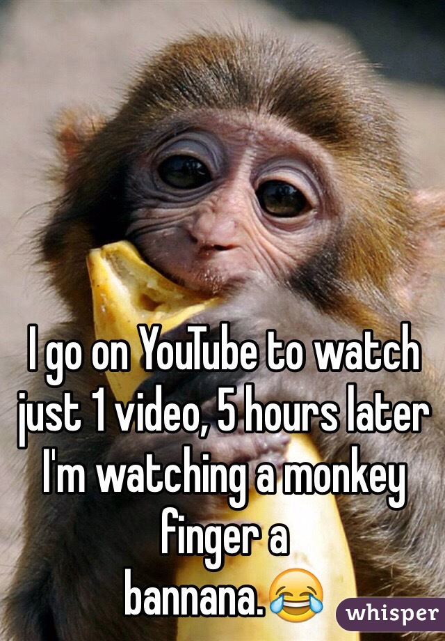 I go on YouTube to watch just 1 video, 5 hours later I'm watching a monkey finger a  bannana.😂