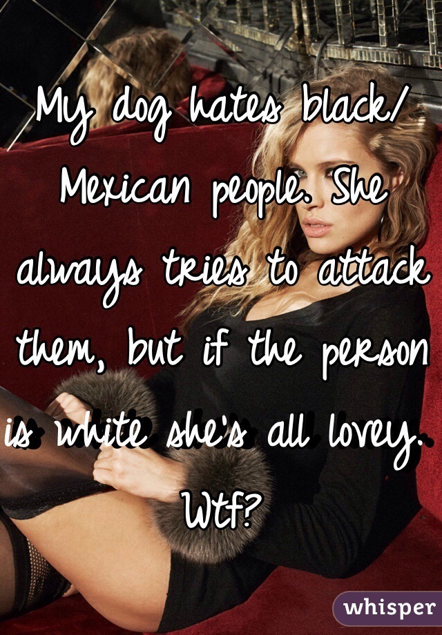 My dog hates black/Mexican people. She always tries to attack them, but if the person is white she's all lovey. Wtf?