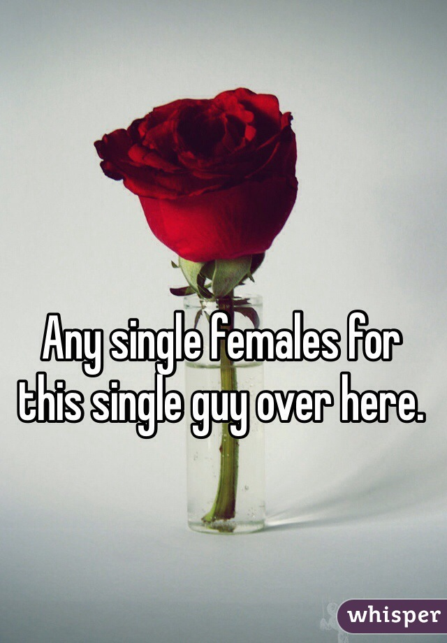 Any single females for this single guy over here.