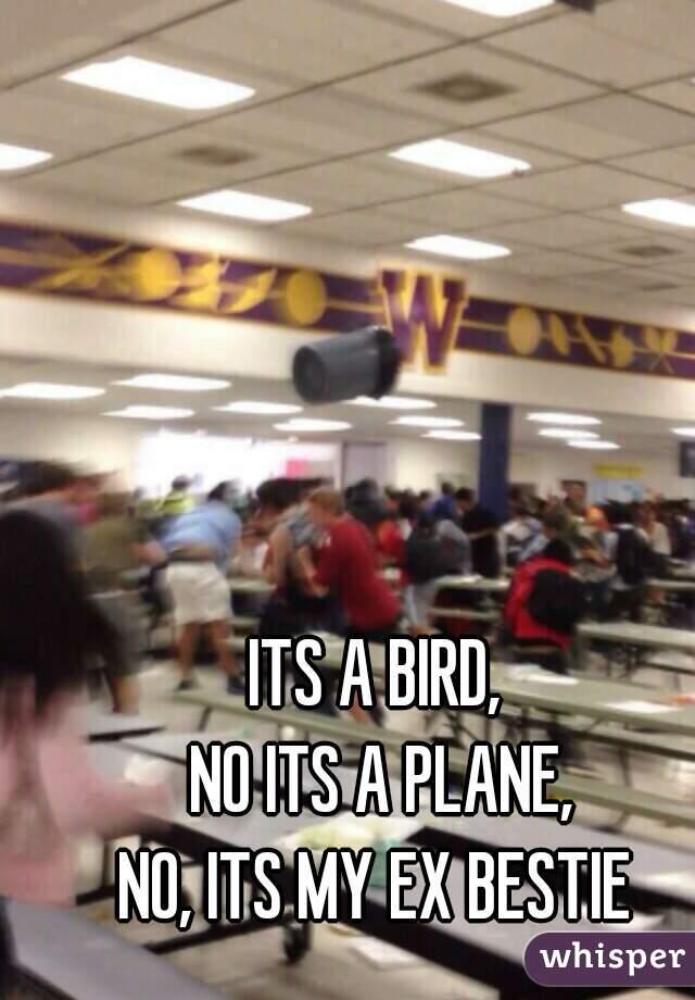 ⬆ ITS A BIRD,  NO ITS A PLANE, NO, ITS MY EX BESTIE