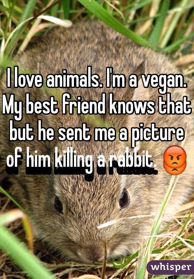 I love animals. I'm a vegan. My best friend knows that but he sent me a picture of him killing a rabbit. 😡