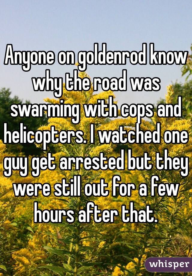 Anyone on goldenrod know why the road was swarming with cops and helicopters. I watched one guy get arrested but they were still out for a few hours after that.