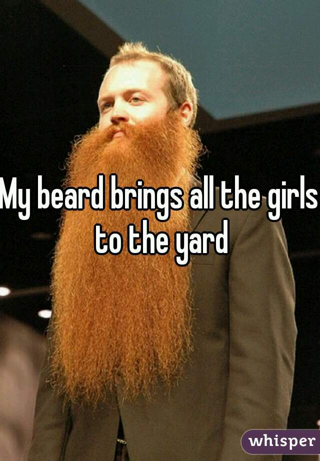 My beard brings all the girls to the yard
