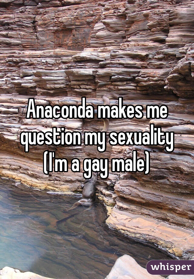 Anaconda makes me question my sexuality (I'm a gay male)
