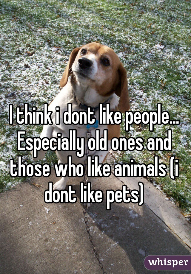 I think i dont like people... Especially old ones and those who like animals (i dont like pets)