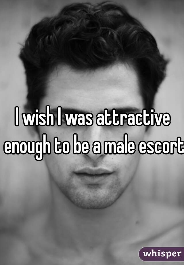 I wish I was attractive enough to be a male escort.