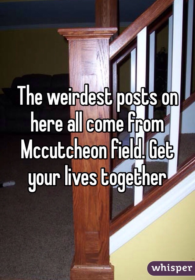 The weirdest posts on here all come from Mccutcheon field. Get your lives together