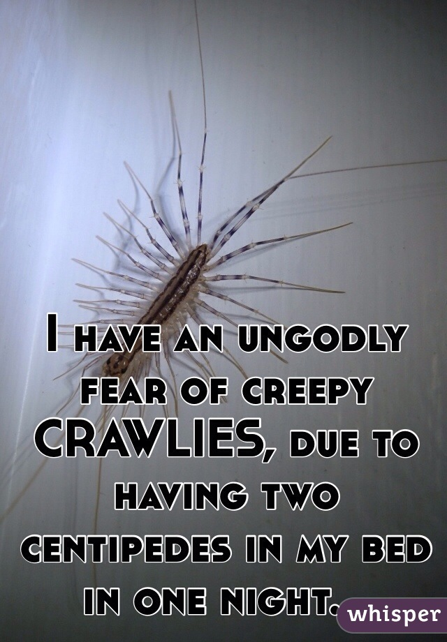 I have an ungodly fear of creepy CRAWLIES, due to having two centipedes in my bed in one night...