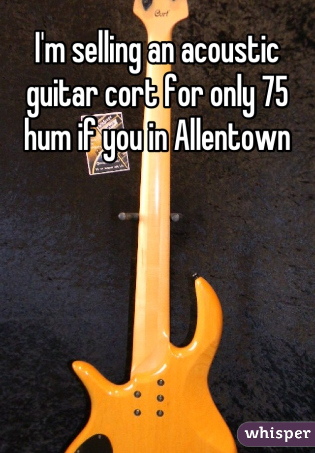 I'm selling an acoustic guitar cort for only 75 hum if you in Allentown