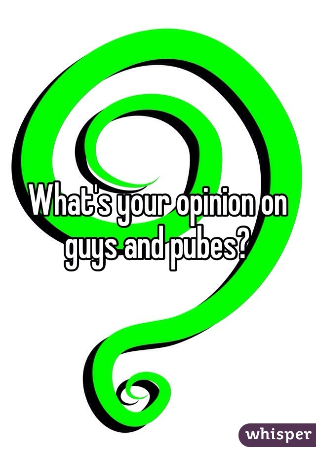 What's your opinion on guys and pubes?