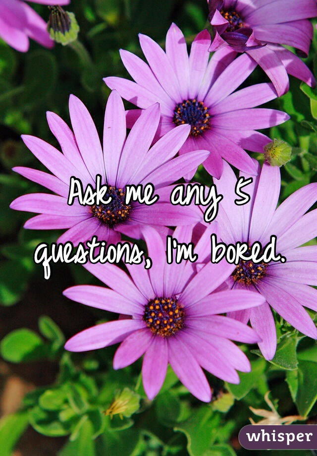Ask me any 5 questions, I'm bored.