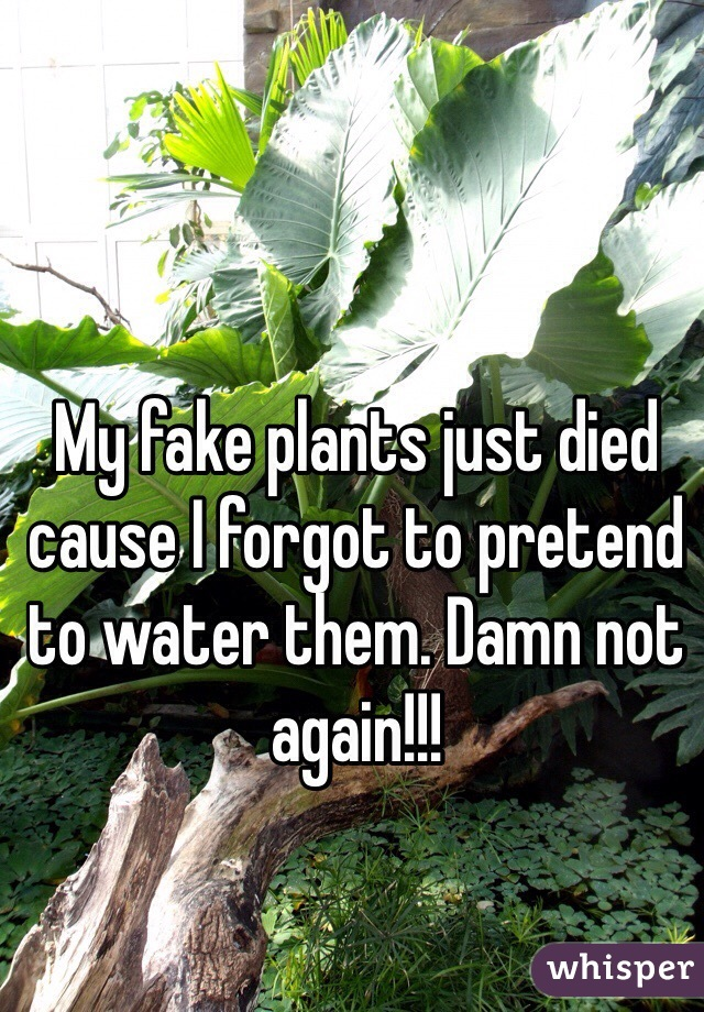 My fake plants just died cause I forgot to pretend to water them. Damn not again!!!