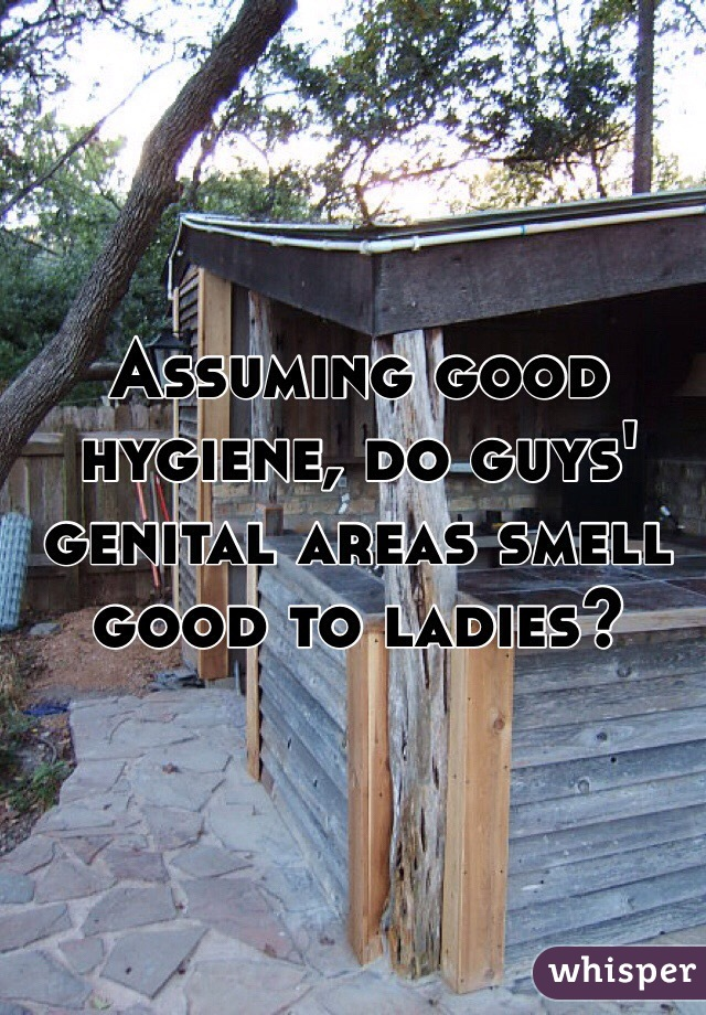 Assuming good hygiene, do guys' genital areas smell good to ladies?