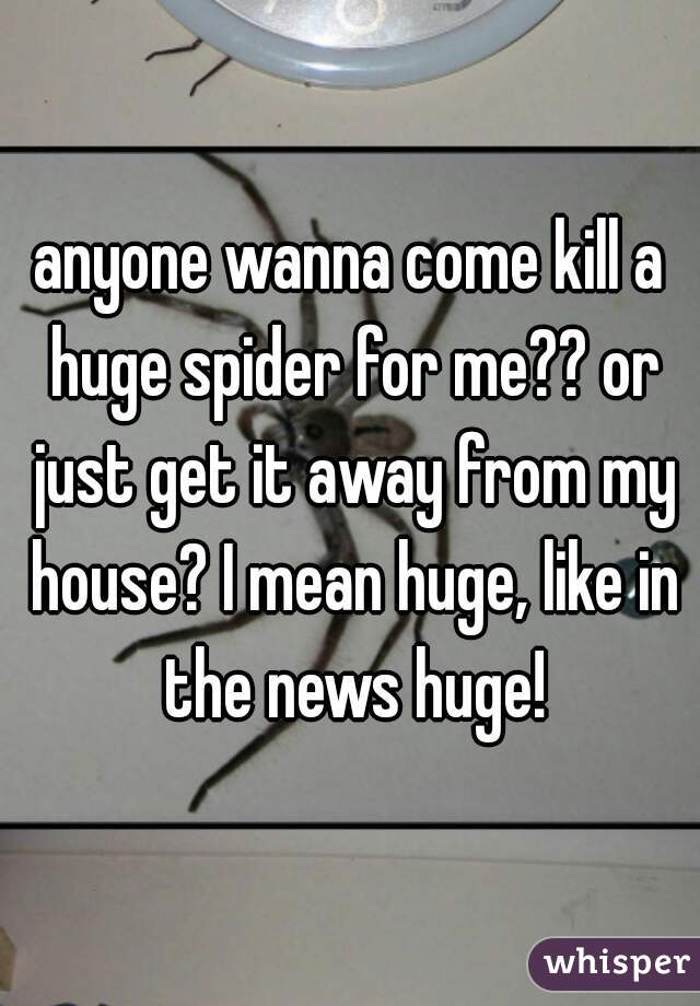 anyone wanna come kill a huge spider for me?? or just get it away from my house? I mean huge, like in the news huge!