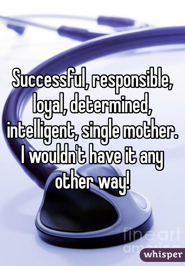 Successful, responsible, loyal, determined, intelligent, single mother.  I wouldn't have it any other way!