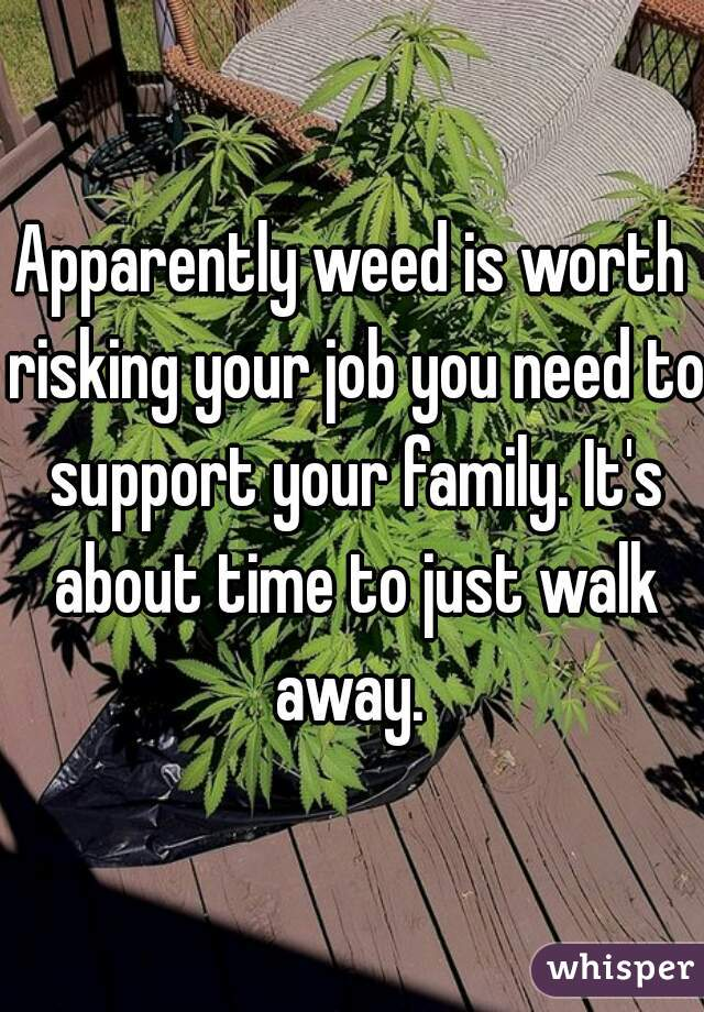 Apparently weed is worth risking your job you need to support your family. It's about time to just walk away.