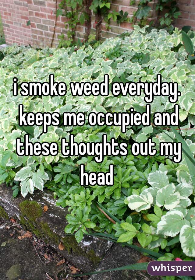i smoke weed everyday. keeps me occupied and these thoughts out my head