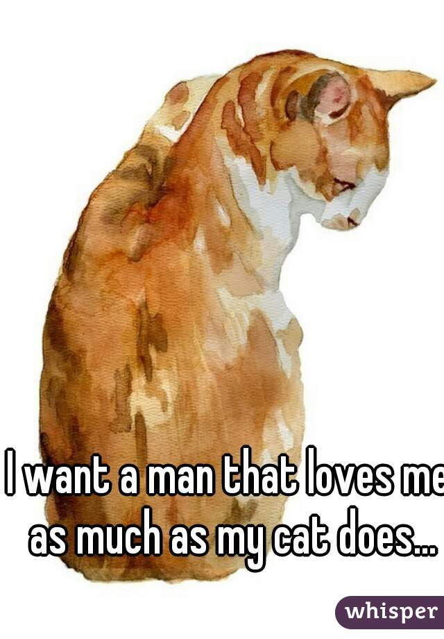 I want a man that loves me as much as my cat does...