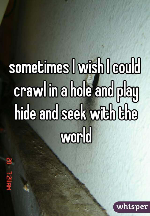 sometimes I wish I could crawl in a hole and play hide and seek with the world