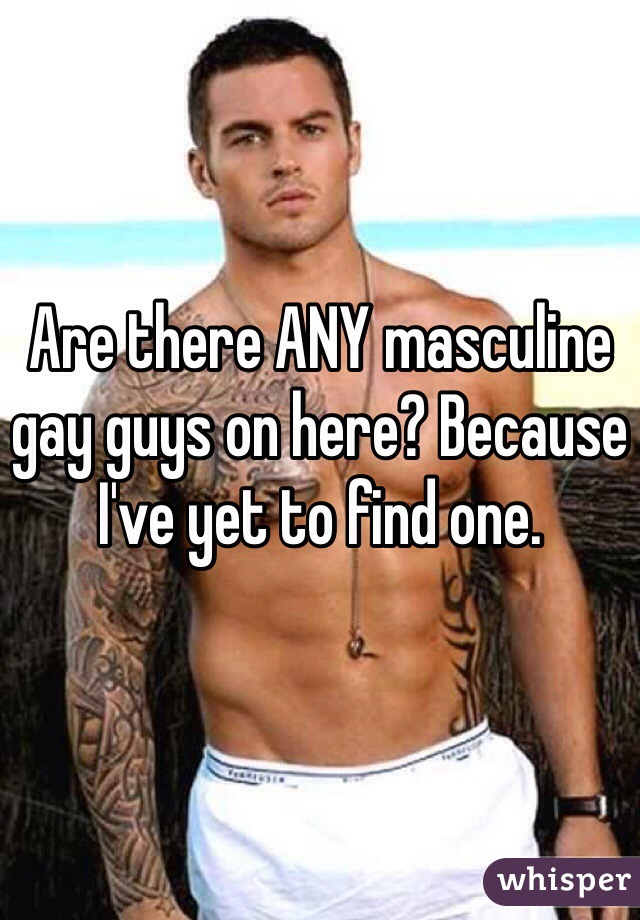 Are there ANY masculine gay guys on here? Because I've yet to find one.