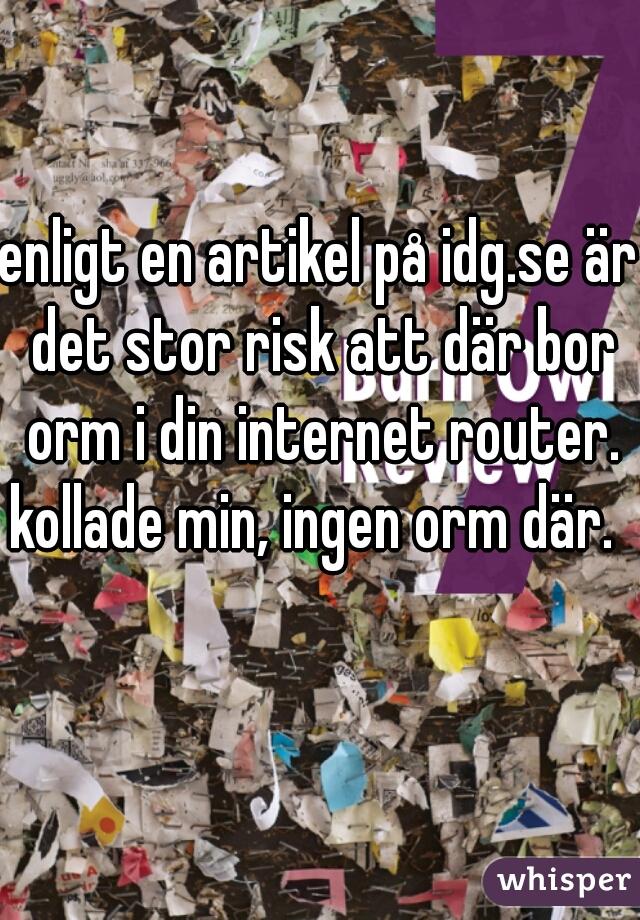 enligt en artikel på idg.se är det stor risk att där bor orm i din internet router. kollade min, ingen orm där.
