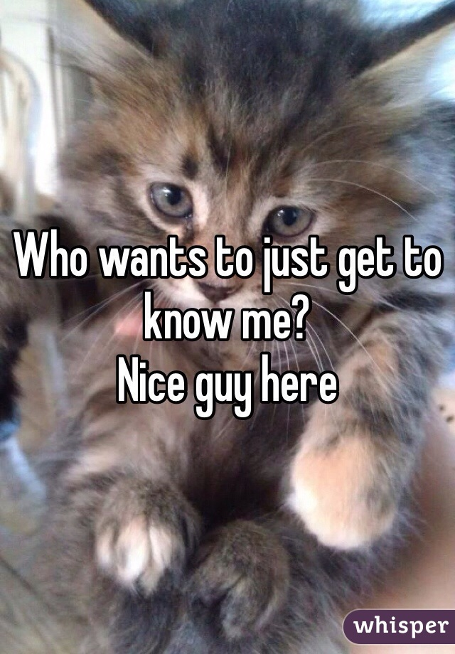 Who wants to just get to know me? Nice guy here