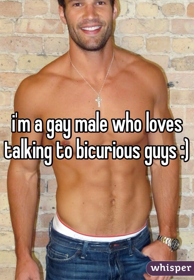 i'm a gay male who loves talking to bicurious guys :)