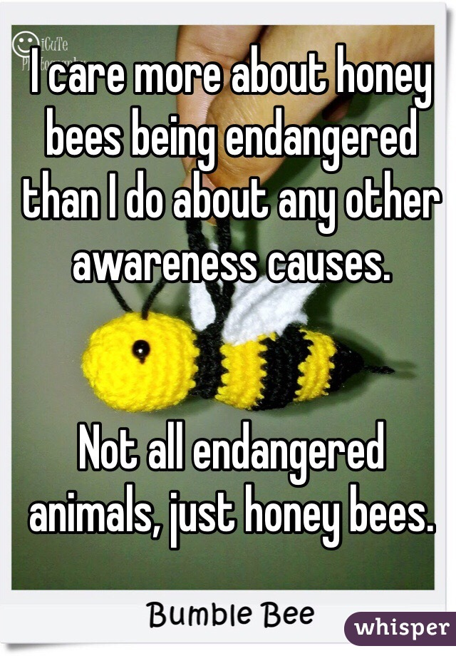 I care more about honey bees being endangered than I do about any other awareness causes.   Not all endangered animals, just honey bees.