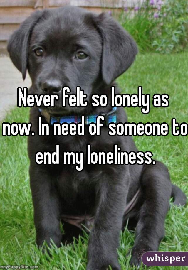 Never felt so lonely as now. In need of someone to end my loneliness.