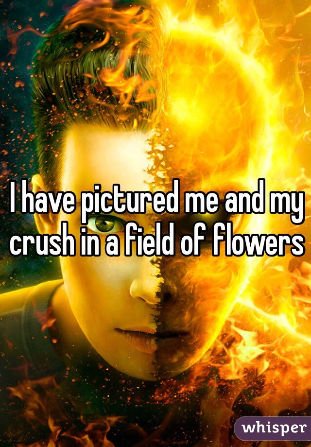 I have pictured me and my crush in a field of flowers
