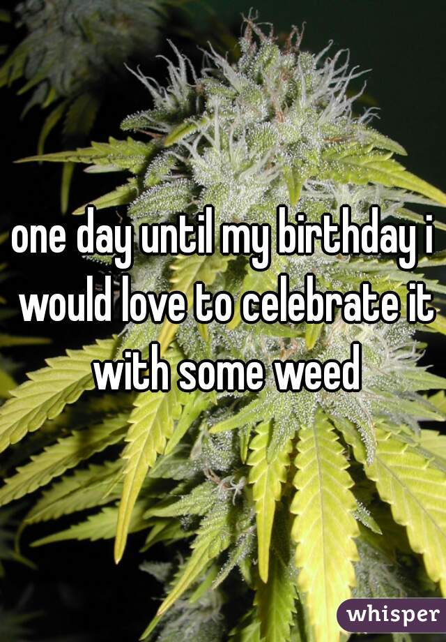 one day until my birthday i would love to celebrate it with some weed
