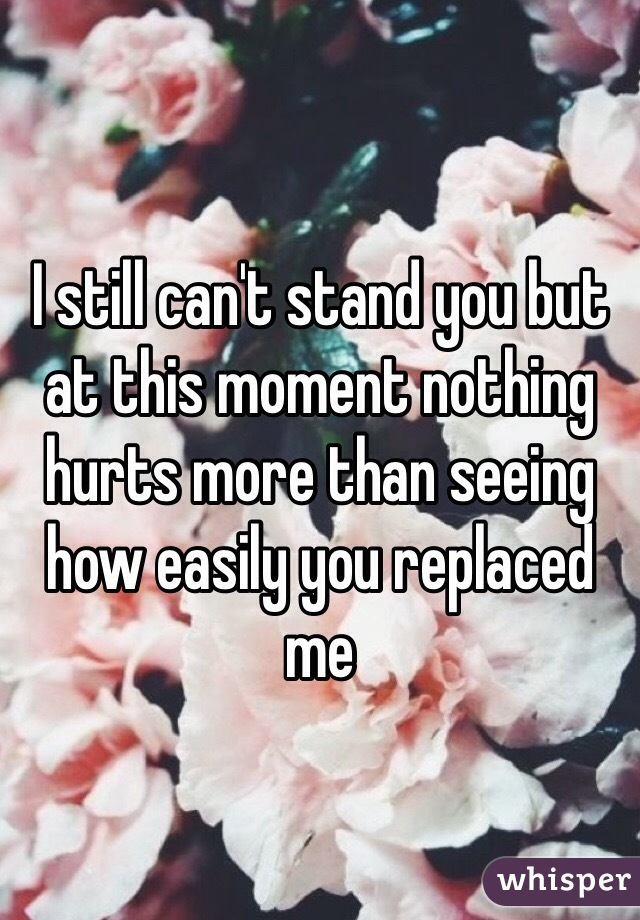 I still can't stand you but at this moment nothing hurts more than seeing how easily you replaced me