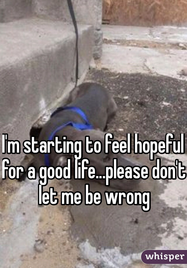 I'm starting to feel hopeful for a good life...please don't let me be wrong