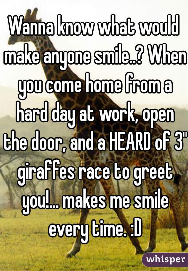 """Wanna know what would make anyone smile..? When you come home from a hard day at work, open the door, and a HEARD of 3"""" giraffes race to greet you!... makes me smile every time. :D"""