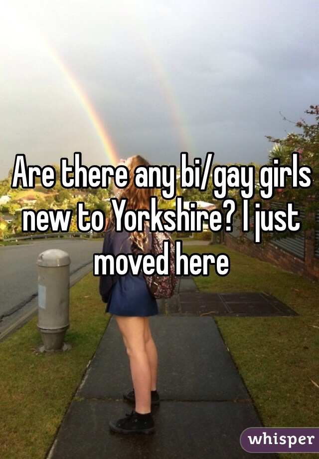 Are there any bi/gay girls new to Yorkshire? I just moved here