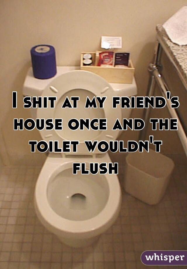 I shit at my friend's house once and the toilet wouldn't flush